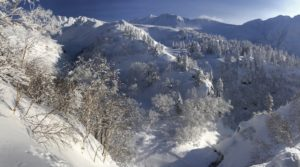 The In's & Out's of your First Ski Trip to Japan