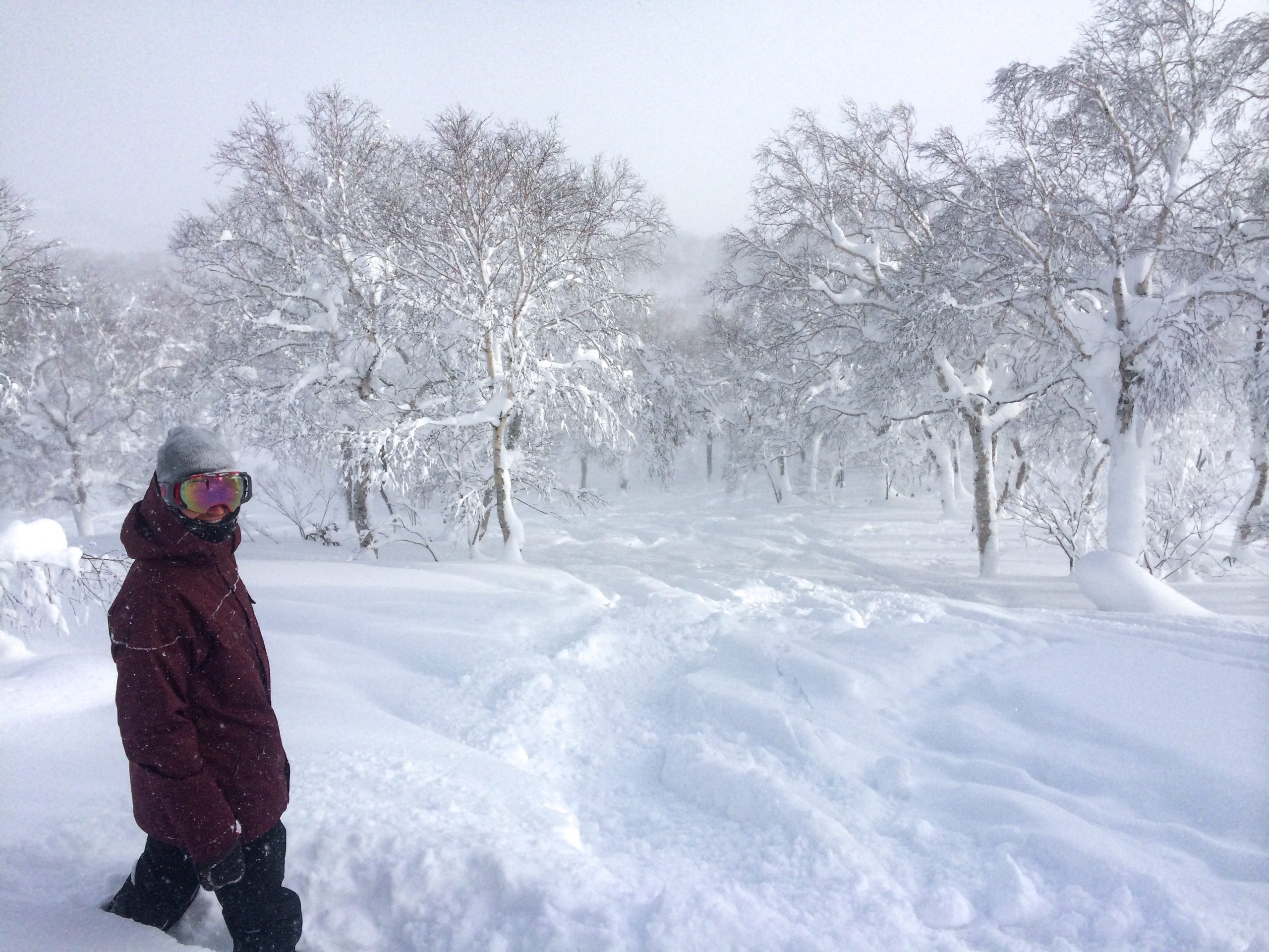Christmas Day on our winter holiday in Niseko